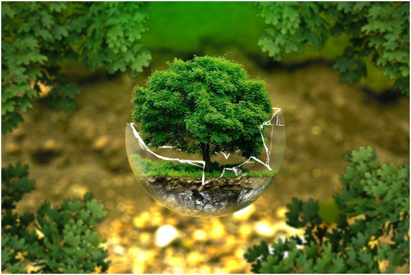 Aware People About Environmental Issues
